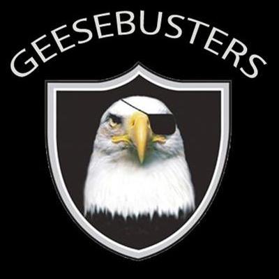 Geesebusters